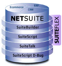 NetSuite Customization